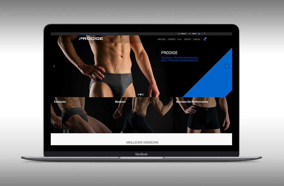 Conception et intégration d'un site web pour Prodige