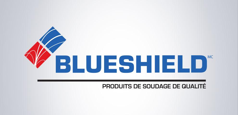 Création de logo pour blueshield, graphiste et branding
