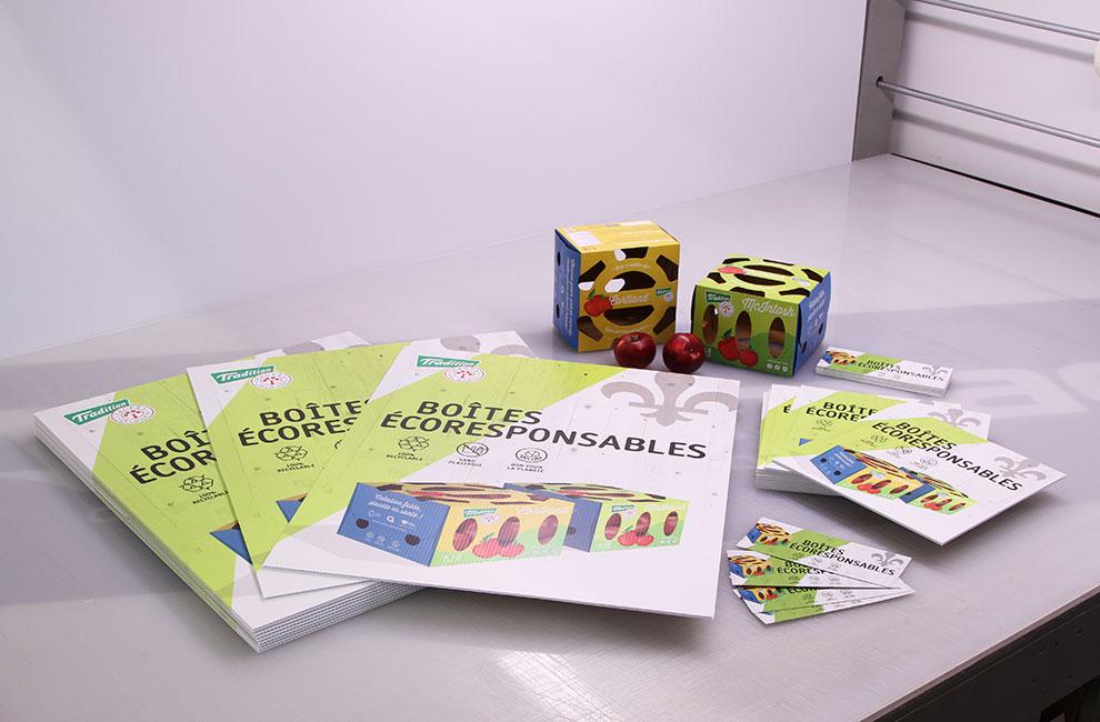 Branding et graphiste pour des boites écoresponsables de pommes, affiches grand format et affichette, publicité